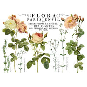 Iron Orchid Designs Decor Image Transfer - Flora Parisiensis