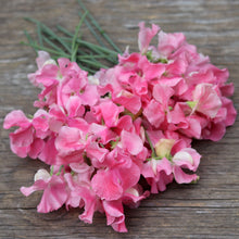 Load image into Gallery viewer, Sweet Pea Gift Collection - Bright and Cheery
