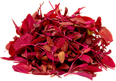 Micro Orach (Local), 4oz