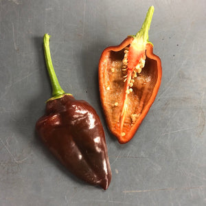 Chocolate Peppers (Local), Lb