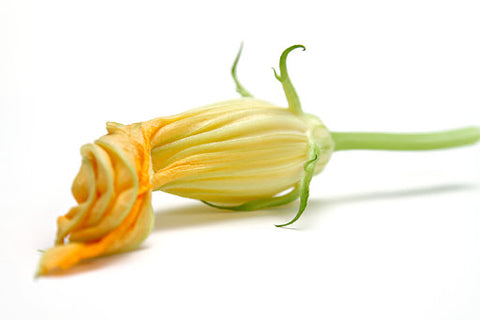 Zucchini Flowers  (Local), pack of 10