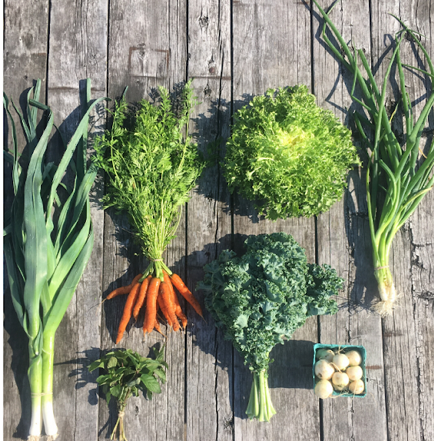 Produce Box #2: Double Crop Box (Local)
