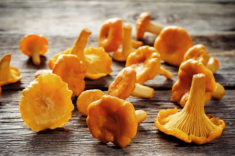 Girolles Mushrooms (France), Lb