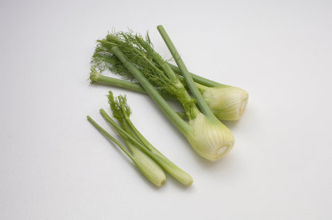 Fennel bulb (Local), each