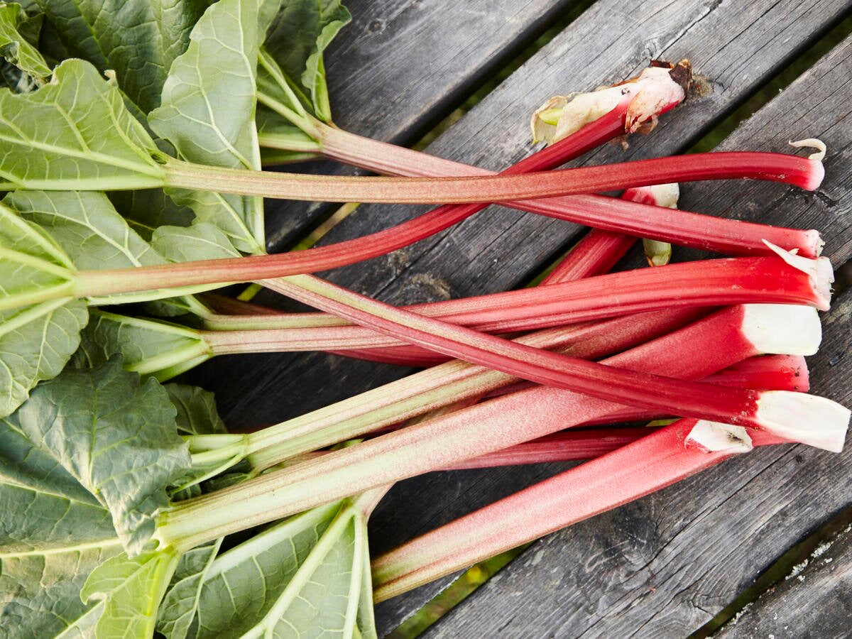 Rhubarb (Domestic), Lb