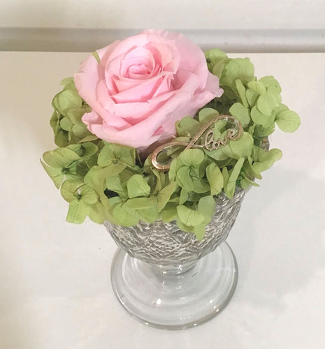CELEBRATE- Single Pink Rose and Preserved Hydrangea
