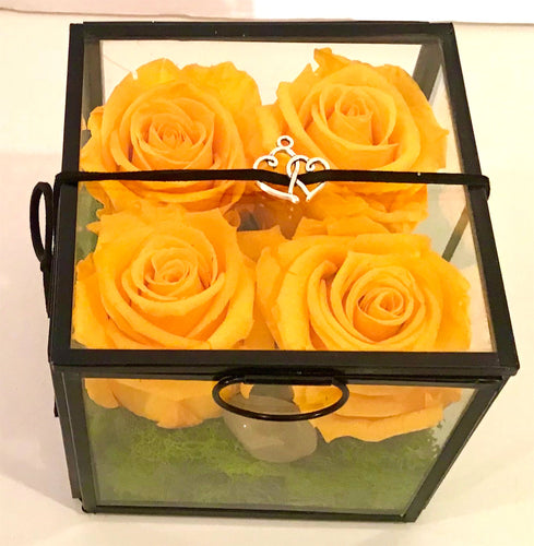 NATURES 4CUBE - Sunshine Yellow Roses, Black Trim with Lid