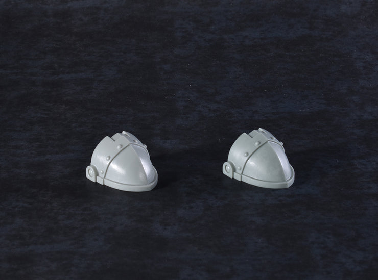 Custodian Guard Toe Guards (2pcs)