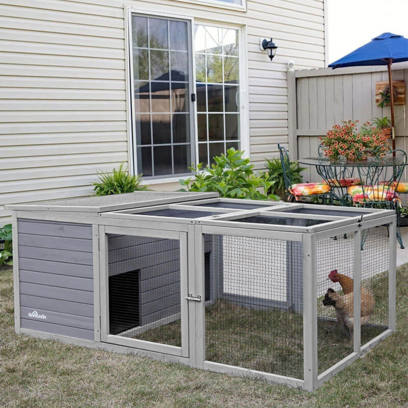 farm chicken coop