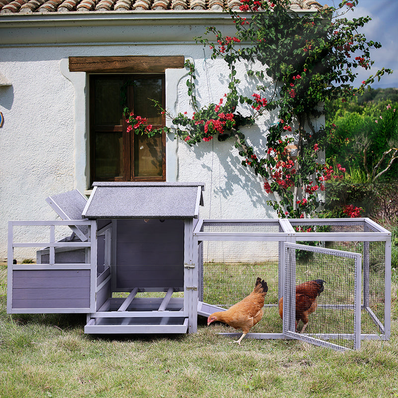 discount chicken coops