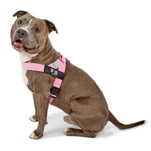 Load image into Gallery viewer, DF Co. Pink Dog Harness