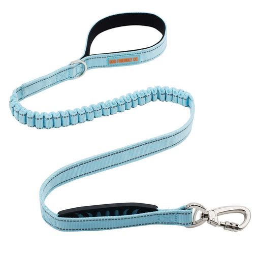 DF Co. Sky Blue Dog Leash