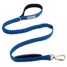 Load image into Gallery viewer, DF Co. Bungee Leash Classic Blue