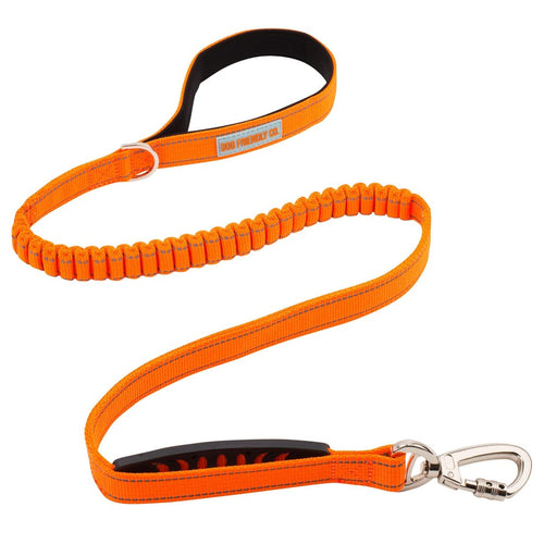 DF Co.  Hi-Vis Orange Dog Leash