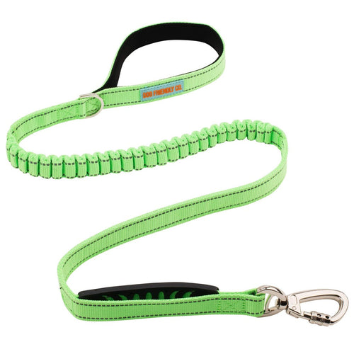 DF Co. Neon Green Dog Leash
