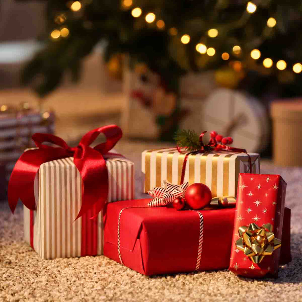 Top 10 Picks For Special Christmas Gifts