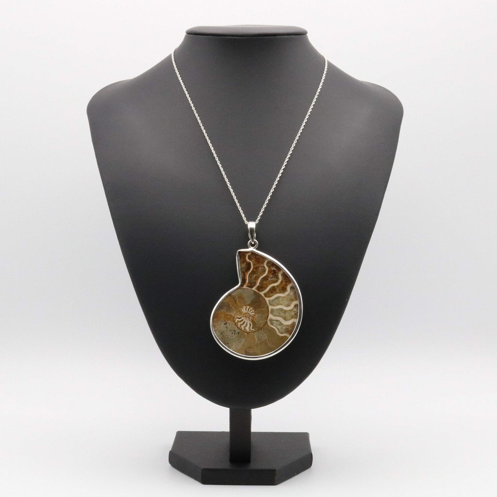 Hepburn and Hughes Ammonite Pendant, Madagascan Large in Sterling Silver