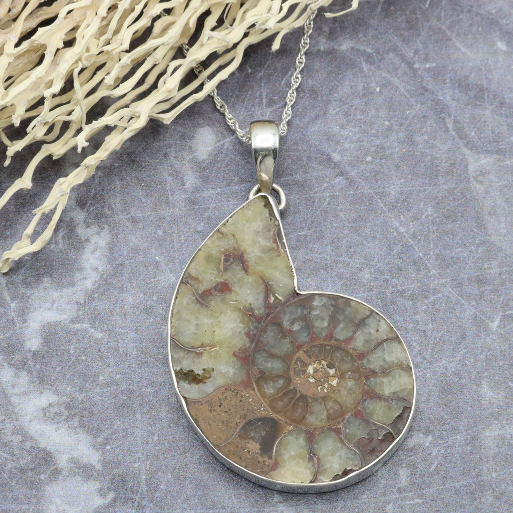 Hepburn and Hughes Ammonite Pendant, Medium Madagascan in Sterling Silver