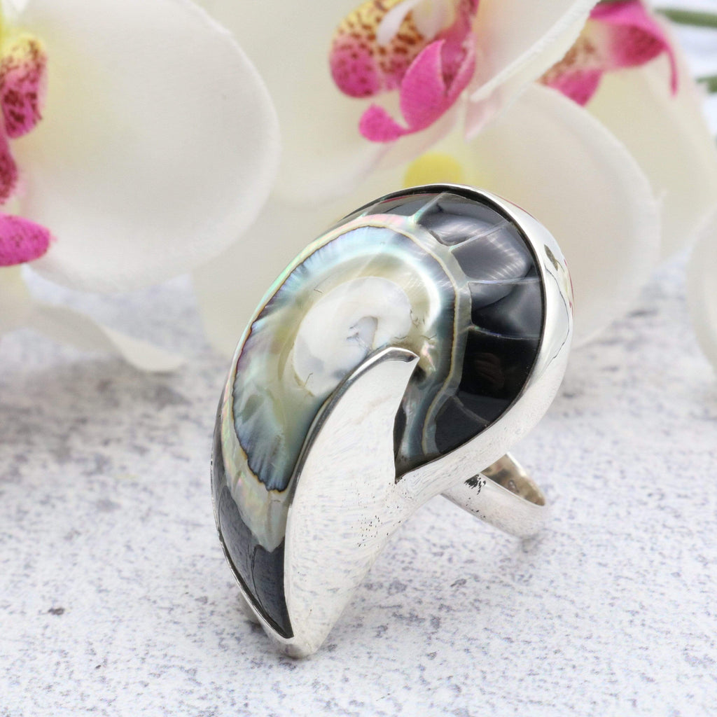 Hepburn and Hughes Nautilus Ring, Black in Sterling Silver