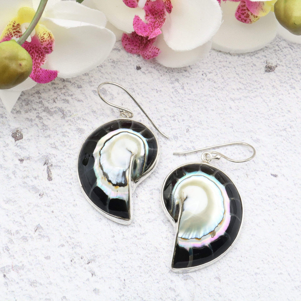 Hepburn and Hughes Nautilus shell Earrings, Black in Sterling Silver