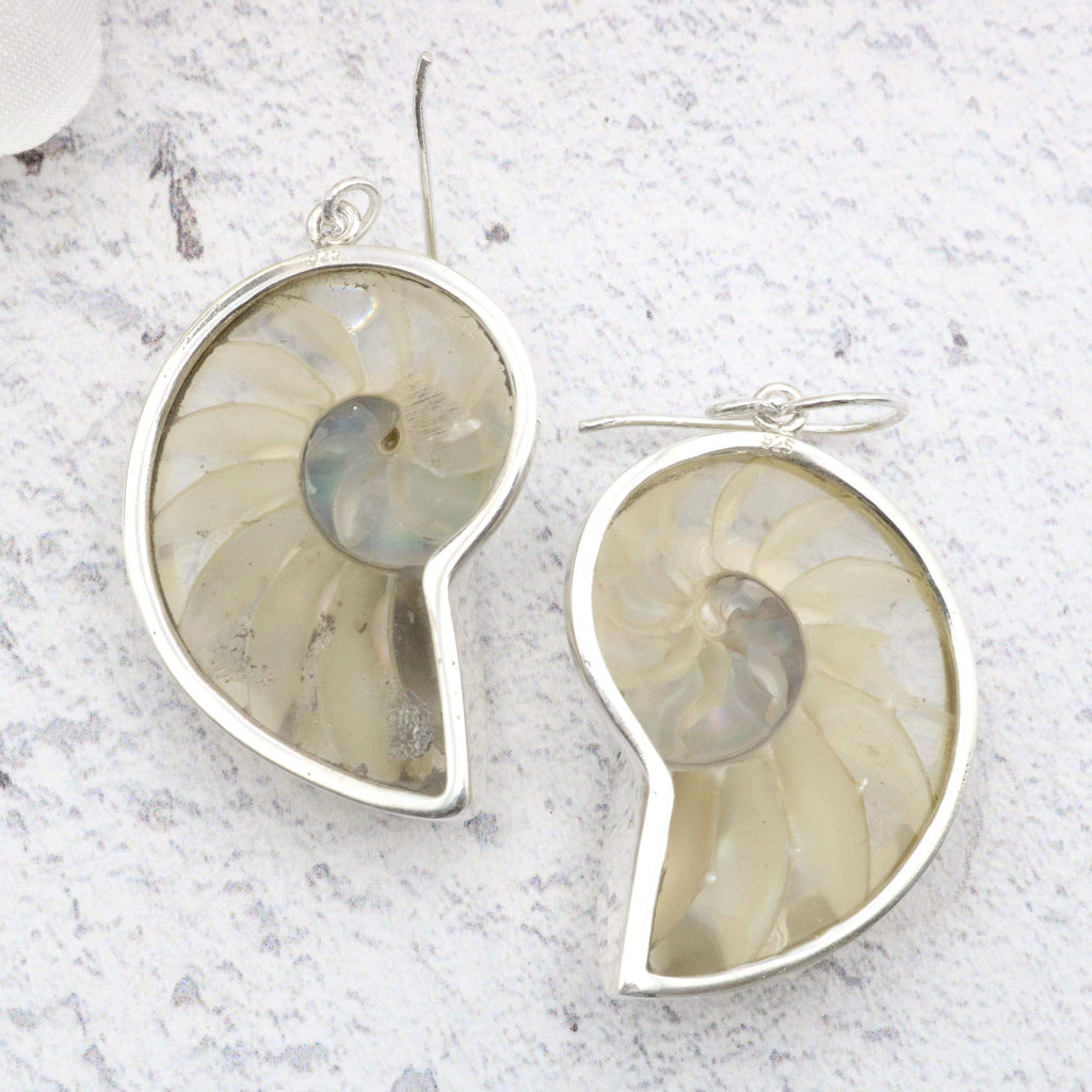Hepburn and Hughes Nautilus shell Earrings, Clear in Sterling Silver