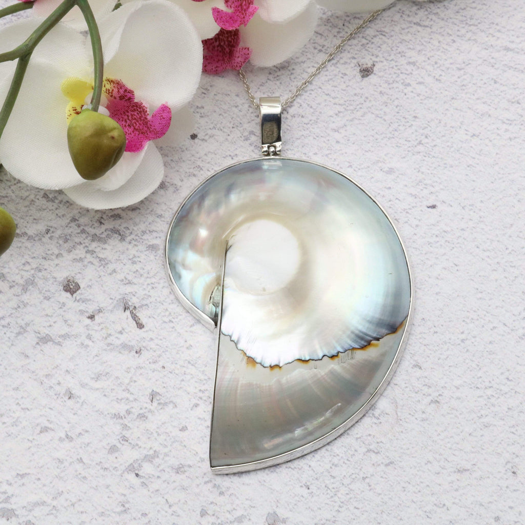 Hepburn and Hughes Nautilus Shell Pendant, extra-large pearl in Sterling Silver