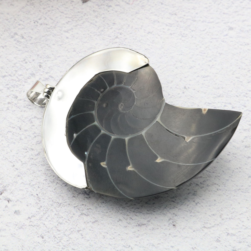 Hepburn and Hughes Nautilus Shell Pendant, large black with jewel in Sterling Silver