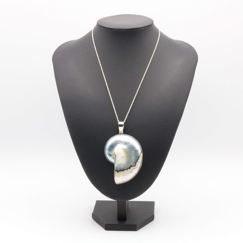 Hepburn and Hughes Nautilus Shell Pendant, medium pearl in Sterling Silver
