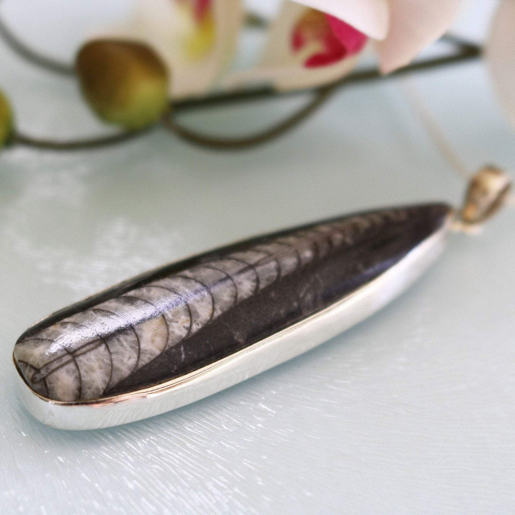 Hepburn and Hughes Orthoceras Pendant, Large in Sterling Silver