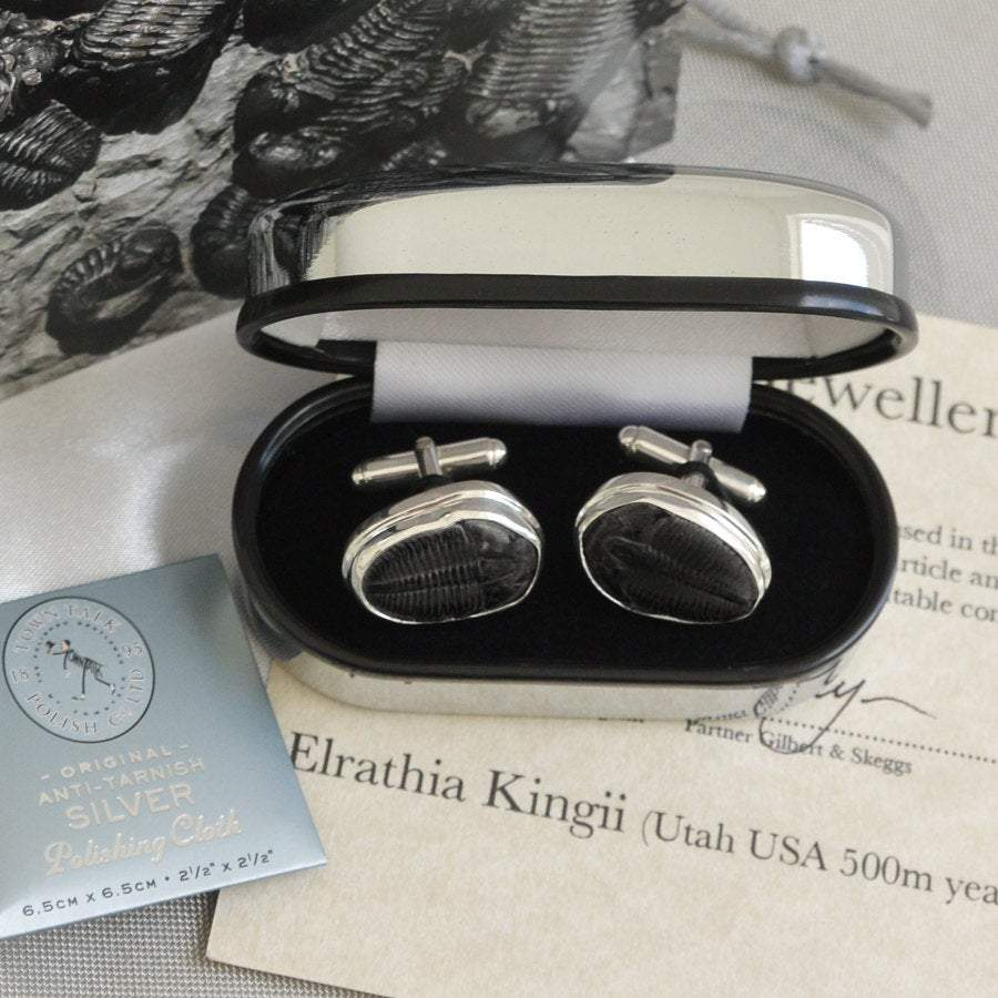 Hepburn and Hughes Trilobite Cufflinks in Sterling Silver