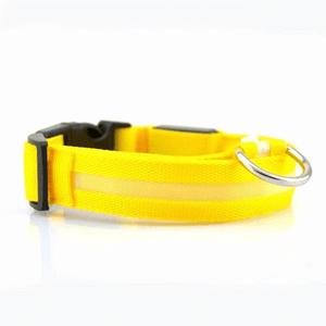 Glowing Pet Collar