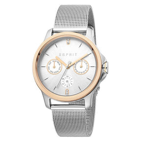 Esprit Women's Silver Dial Stainless Steel Mesh Band Watch ES1L145M0115 1