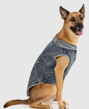 Load image into Gallery viewer, Canada Pooch Downtown Denim Vest