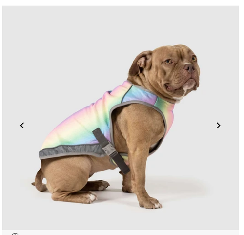 Canada Pooch Chill Seeker Cooling Vest - Rainbow