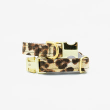 Load image into Gallery viewer, The Rover Boutique COLLAR only