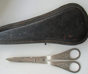 Victorian SOLID SILVER Grape Scissors  in Fitted Leather Case