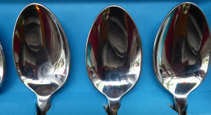 1960s Glosswood Cutlery. Stainless Steel Set of Six Dessert Spoons