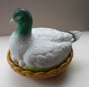Rare ANTIQUE Staffordshire Bisque DUCK on a NEST. Victorian era; and in excellent condition