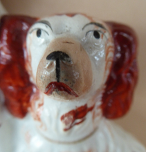 Load image into Gallery viewer, Antique Staffordshire King Charles Spaniel Dogs Sitting on Top of a Barrel. Genuine Victorian Figurine