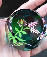 Load image into Gallery viewer, SCOTTISH Miniature Cushion Cut LIMITED EDITION Caithness Paperweight by William Manson: Woodland Flowers, 1993