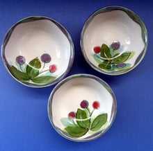 Load image into Gallery viewer, SCOTTISH Pottery. Vintage WILD BERRIES Design Cereal Bowl by Highland Stoneware, Scotland. Hand Decorated