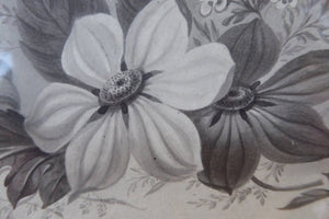 ORIGINAL GEORGIAN Watercolour.  RARE Early 19th Century Grisaille Floral Designs for Plate Border Decorations: E