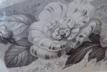 Load image into Gallery viewer, ORIGINAL GEORGIAN Watercolour.  RARE Early 19th Century Grisaille Floral Designs for Plate Border Decorations: E