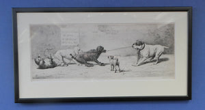 SATIRICAL PRINT. Original Tug of War Engraving by F. Mansell after the painting by Harding Cox; 1899