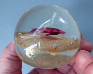Paul Ysart HARLAND PAPERWEIGHT; with Gold Ground, Pretty Pink Striped Fish and Controlled Bubbles. Signed with H Cane