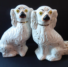 Load image into Gallery viewer, Antique Pair of Staffordshire Dogs Chimney Spaniels / Wally Dugs; 9 1/2 inches with yellow painted eyes, c1880s