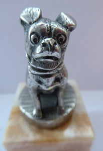 PUG DOG. Vintage White Metal MASCOT in the form of a Miniature Seated Pug. Mounted on Small Marble Cuboid Base