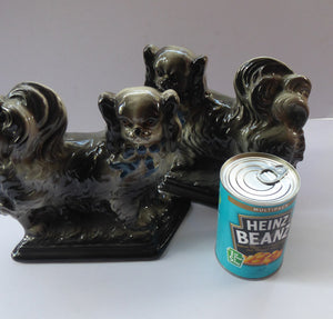 SCOTTISH POTTERY Antique Bo'ness Pekingese Mantle Dogs. Rarer Grey Pair with Blue Bows and Painted Eyes; 1909