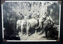 Load image into Gallery viewer, INDIA INTEREST: Early 20th Century Photo Album Showing the Life and Interests of the British Living in India in pre-war days