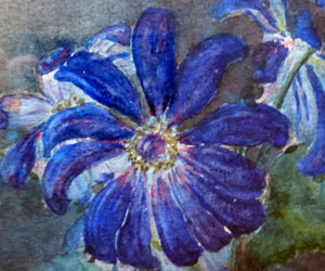 SCOTTISH ART: Kate Cameron (1874- 1965). Beautiful Original Watercolour. Still Life Featuring Blue Daisies in a Vase. SIGNED